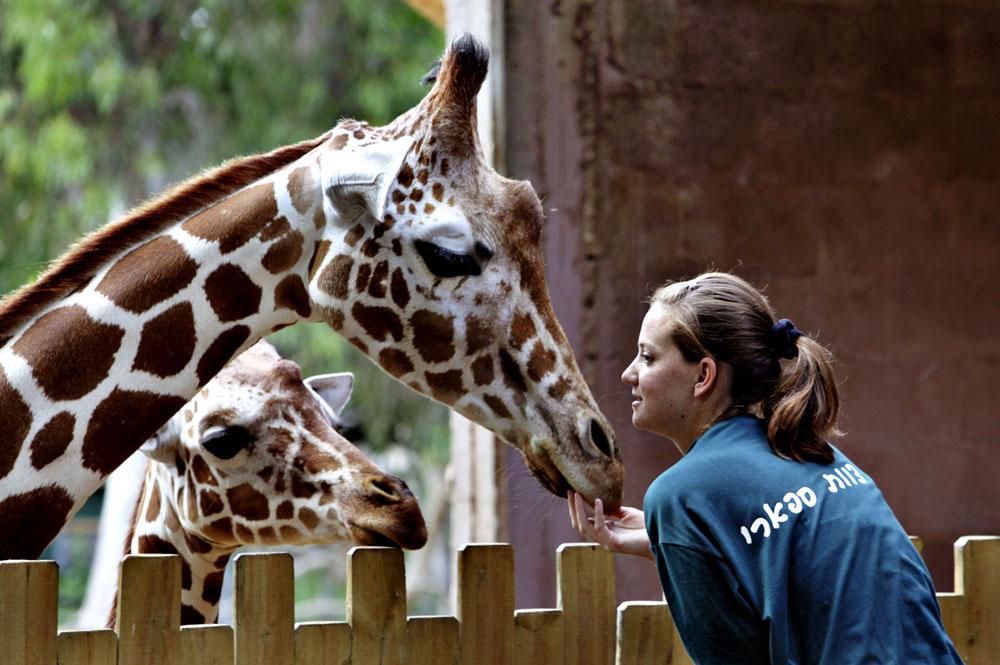 8 лучших зоопарков в мире