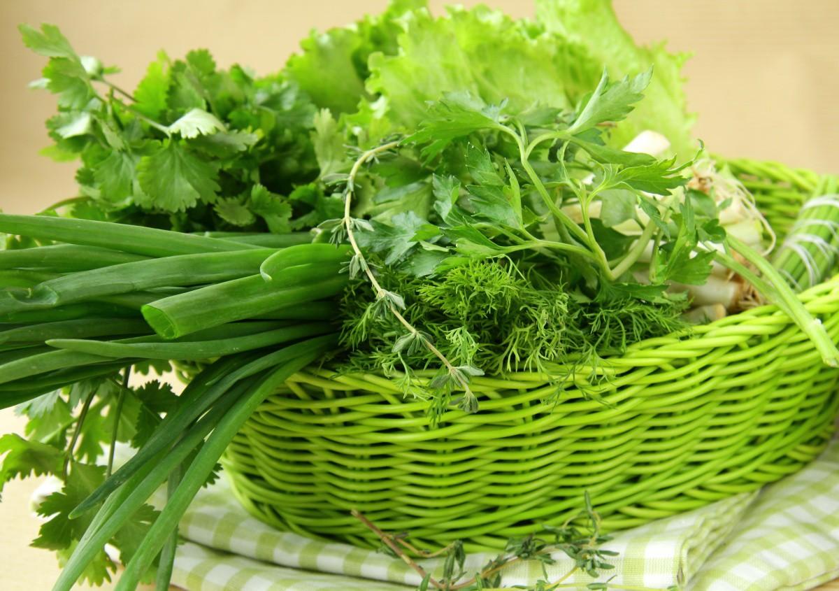 Зелень на подоконнике: секреты выращивания